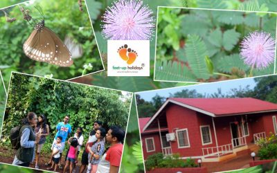 Enjoy Nature Trail With Our Expert.
